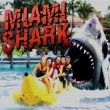 Miami Shark Game Online kiz10