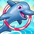 my-dolphin-show-5