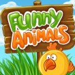 Funny Animals Game Online kiz10