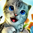 Cat Simulator Game Online kiz10