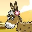 Mi burro y yo
