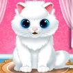 Baby Kitten Care