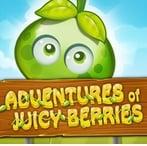 Game Adventures of Juicy Berries