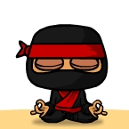 Sloppy Ninja Destiny