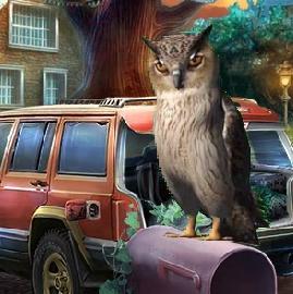 Game Visit to Owl Street