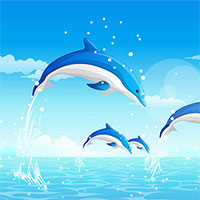 Game Dolphin Cup