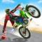 Two Bike Stunts