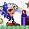 Sonic in Troll Island