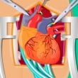 Heart Surgery Game Online kiz10